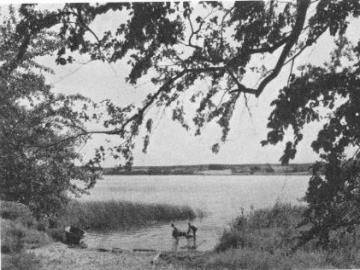 Tystrup Sø, Foto: DN