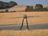 Fremtidshistorie - Landbrug & Økologi
